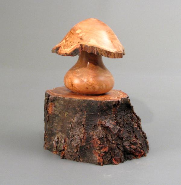 Mushroom on a Cherry Branch